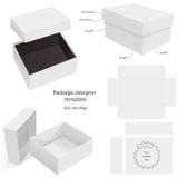 Caja de la maqueta del paquete Fotografía de archivo
