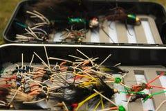 Caja de la mosca foto de archivo libre de regalías