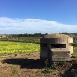 Caja de la píldora en Sicilia Fotografía de archivo libre de regalías