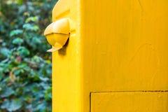 Caja de letra amarilla vieja imagen de archivo