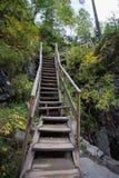 Caja de madera al aire libre de la escalera en el bosque Imagen de archivo libre de regalías