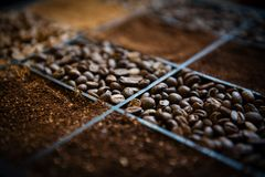Caja de madera con el café del grano de café y molido Foto de archivo