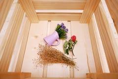 Caja de madera con la pequeña flor púrpura en pote Fotografía de archivo libre de regalías