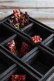 Caja de madera del chocolate Fotografía de archivo
