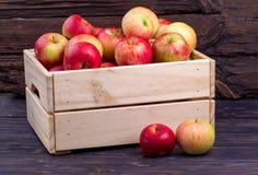 Caja de madera por completo de manzanas frescas en un fondo de madera Fotos de archivo libres de regalías