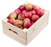 Caja de madera por completo de manzanas frescas aisladas en un blanco Imagen de archivo
