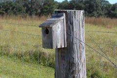 Caja de pájaro Imagen de archivo libre de regalías