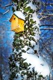 Caja de pájaro en un árbol cubierto con la hiedra y la nieve en fondo del cielo azul Fotos de archivo libres de regalías