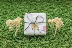 caja de regalo blanca con la cinta de plata en el fondo de la hierba verde adornado con el árbol seco de la planta Imágenes de archivo libres de regalías