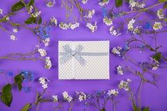 Caja de regalo blanca rodeada con las pequeñas flores azules y blancas en el fondo violeta Imágenes de archivo libres de regalías