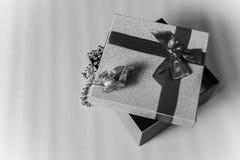 Caja de regalo con la cinta para el regalo Rebecca 36 Fotografía de archivo libre de regalías
