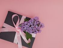 Caja de regalo con la cinta rosada en el fondo rosado, adornado con la lila Día del `s de la madre Día del ` s de la tarjeta del  Fotos de archivo