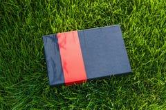 Caja de regalo en la hierba Foto de archivo