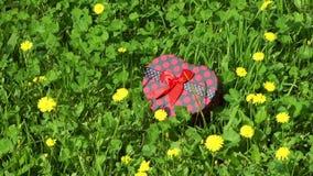 Caja de regalo en la hierba almacen de metraje de vídeo