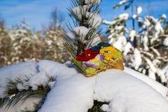 Caja de regalo en nieve imagen de archivo libre de regalías