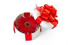 Caja de regalo redonda con la flor Imagenes de archivo