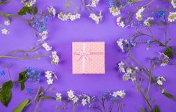 Caja de regalo rosada rodeada con las pequeñas flores azules y blancas en el fondo violeta Imágenes de archivo libres de regalías