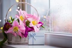 Caja de regalo y ramo blando de tulipanes rosados hermosos en la cesta blanca cerca de la ventana con las gotas de agua en la luz Imagen de archivo
