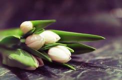 Caja de regalo y tulipanes blancos Fotos de archivo