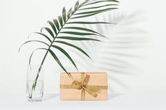Caja de regalo y una hoja de palma en un vidrio de agua foto de archivo libre de regalías
