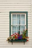 Caja de ventana con las flores Imagen de archivo libre de regalías