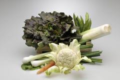 Caja de verduras mezcladas Fotografía de archivo libre de regalías