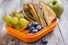 Caja del almuerzo sana de los cabritos imagen de archivo libre de regalías