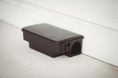 Caja del cebo de la rata en el piso blanco foto de archivo