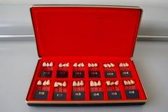 Caja del vintage de guías dentales de la sombra de los dientes de la porcelana Foto de archivo libre de regalías