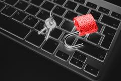 Caja fuerte bloqueada del ordenador del ataque del virus o del malware Ordenador portátil que es protegido contra crimen y cortar imagenes de archivo