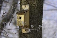 Caja para los pájaros en árbol Fotos de archivo libres de regalías