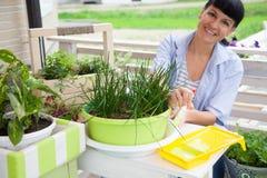 Caja sonriente feliz de la pintura de la mujer para las flores Crisoles de flor verdes Fotos de archivo