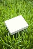 Caja sostenible verde del producto Fotografía de archivo libre de regalías