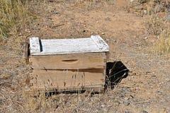 Caja vieja de la miel en el desierto Imagenes de archivo
