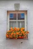 Caja vieja de la ventana y de la flor Imagen de archivo