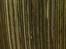 Caja vieja del cartón de papel Imagen de archivo