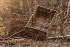Caja vieja en el jardín soleado del bosque imagenes de archivo