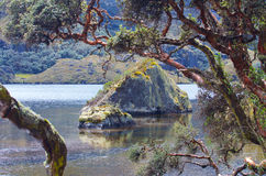 Cajas国家公园 库存图片