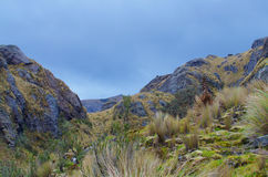 Cajas国家公园 图库摄影