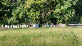 Cajas coloridas de la colmena en un campo en Italia Imagenes de archivo