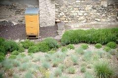 Cajas de la abeja en el jardín Imagen de archivo