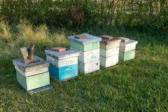 Cajas de la colmena de la abeja de la miel y equipo de la apicultura Fotografía de archivo libre de regalías