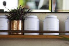Cajas de la lata en un estante Fotografía de archivo