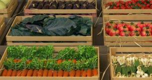 Cajas de las verduras almacen de video