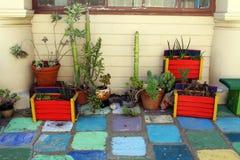 Cajas de madera y potes coloridos con las plantas y los cactus en un piso tejado Foto de archivo