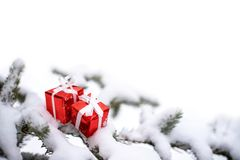 Cajas de regalo de la Navidad y árbol de abeto de la nieve imagen de archivo libre de regalías