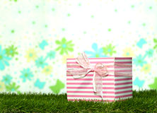 Cajas de regalo que ponen en la hierba Fotos de archivo