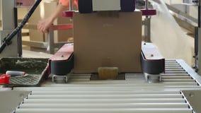 Cajas en transportador en la fábrica almacen de video