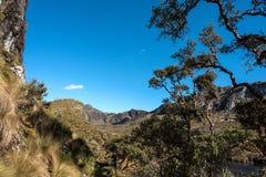 Cajas National Park, Andean Highlands, Ecuador Royalty Free Stock Photo