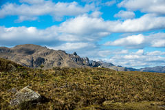 Cajas National Park, Andean Highlands, Ecuador Stock Images